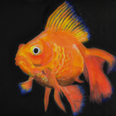 Canvas Painting Fish