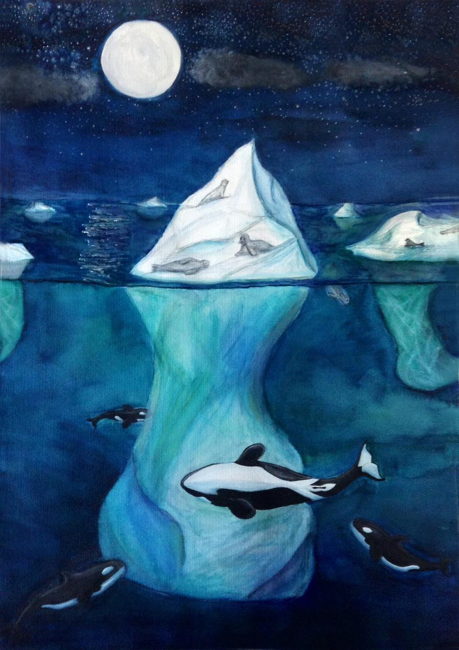 Orcas Play (14yo)