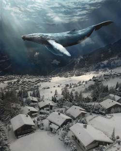 WhaleWahleWhale