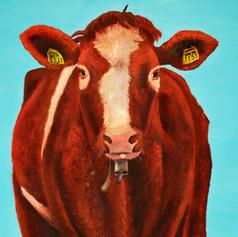 COW EDITED.jpg