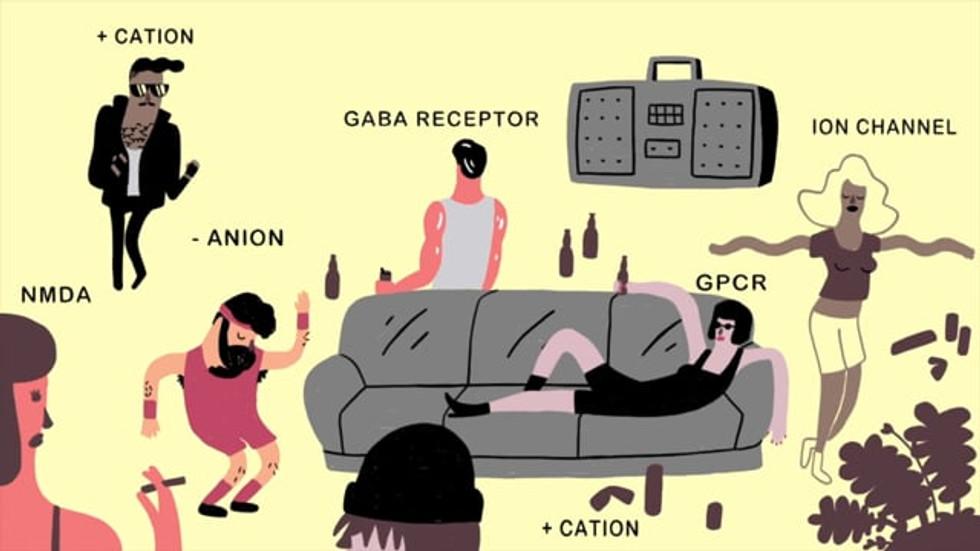 Excitation and Inhibition | HarvardX Neuroscience