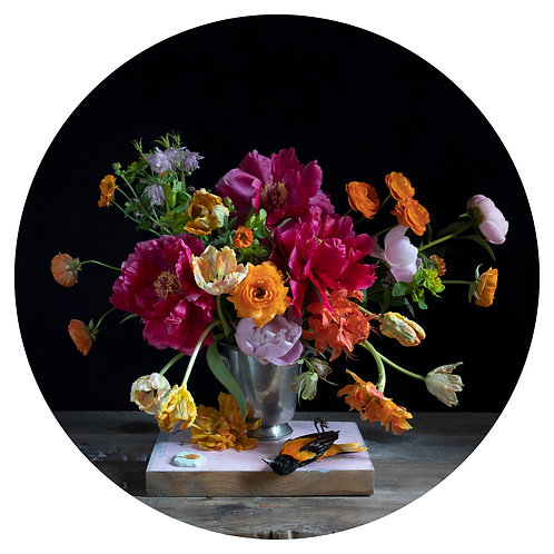 Tulips & Baltimore - Kristin Sjaadra