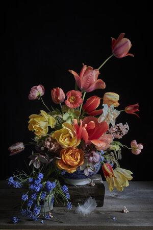 Tulips & Cardinal - /10