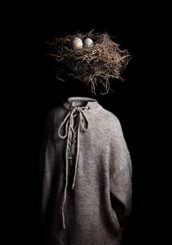 Ceci n'est pas le nid d'un oiseau