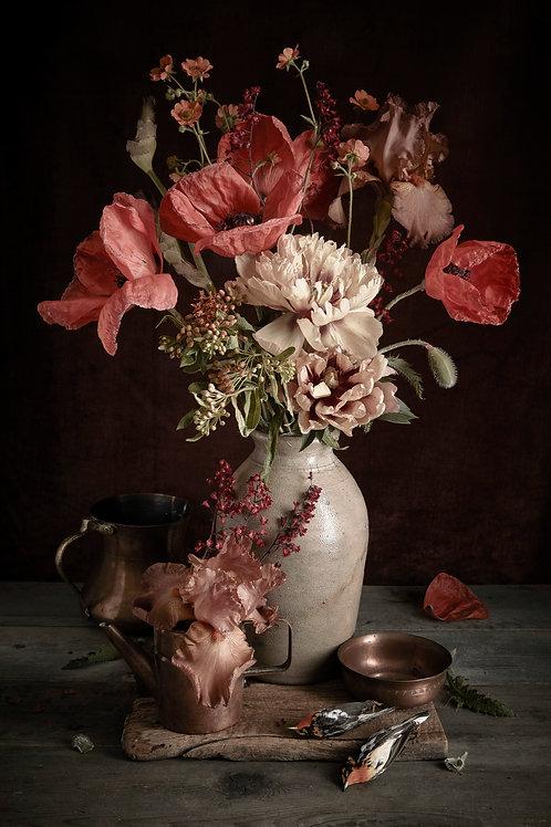 Poppy + Black Burnian Warbler - Kristin Sjaadra