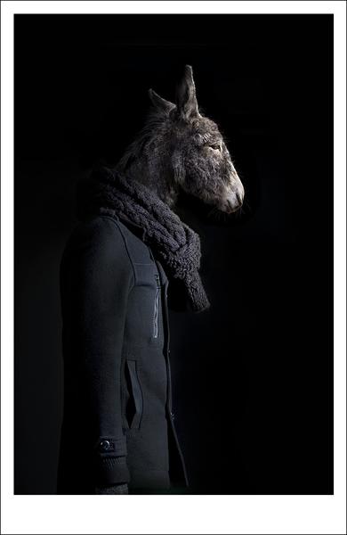 Second Skins - Retrato Numero 39