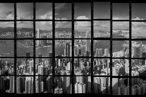 Hong Kong Harbour Contact 2014