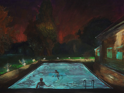 Nightswimming  12  (Andrea Gallo's House)