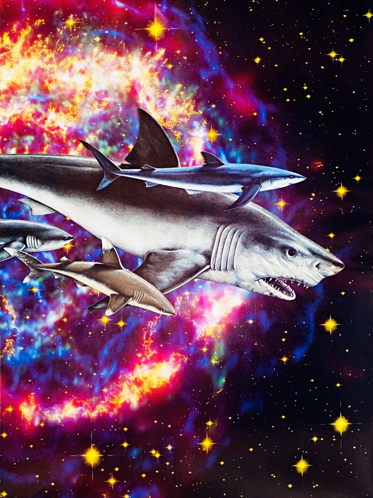 Animal Friends - Space Sharks