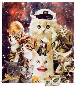 Animal Friends - Space catz
