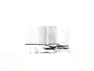 2020_Liensterrestre X