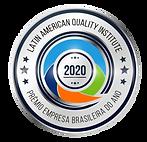 BRAZIL 2020 PRATEADO.png