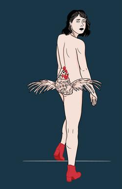 PALM illustrations poulet