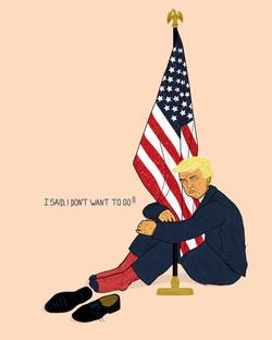 Trump la fin du règne