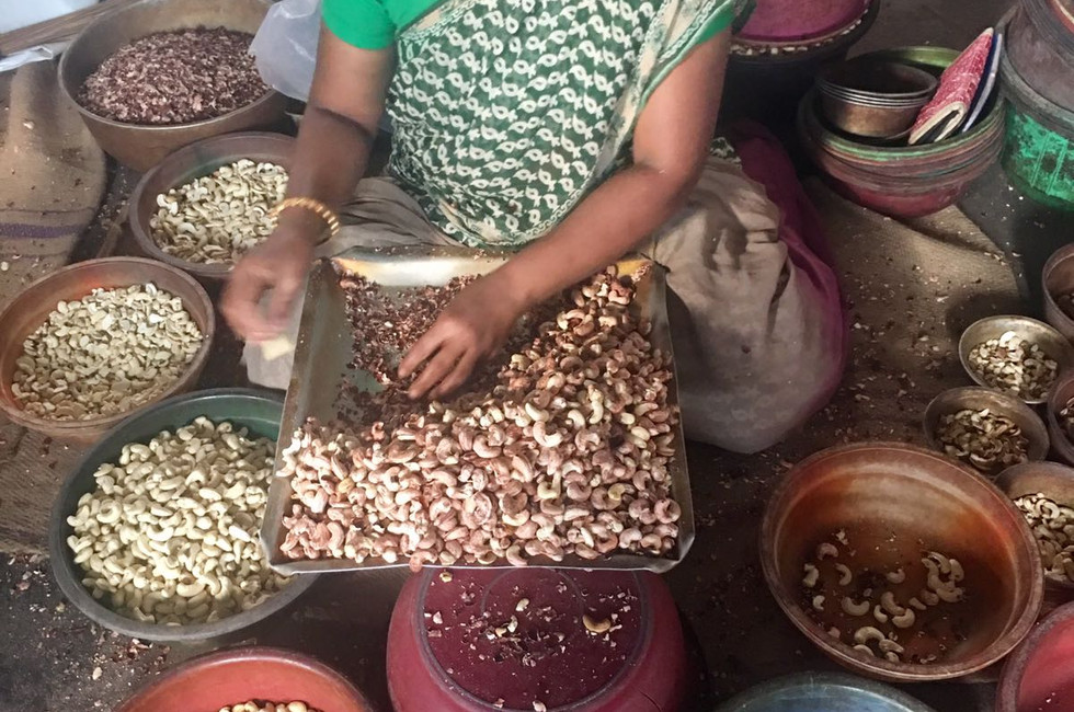 Sorting the cashew nuts