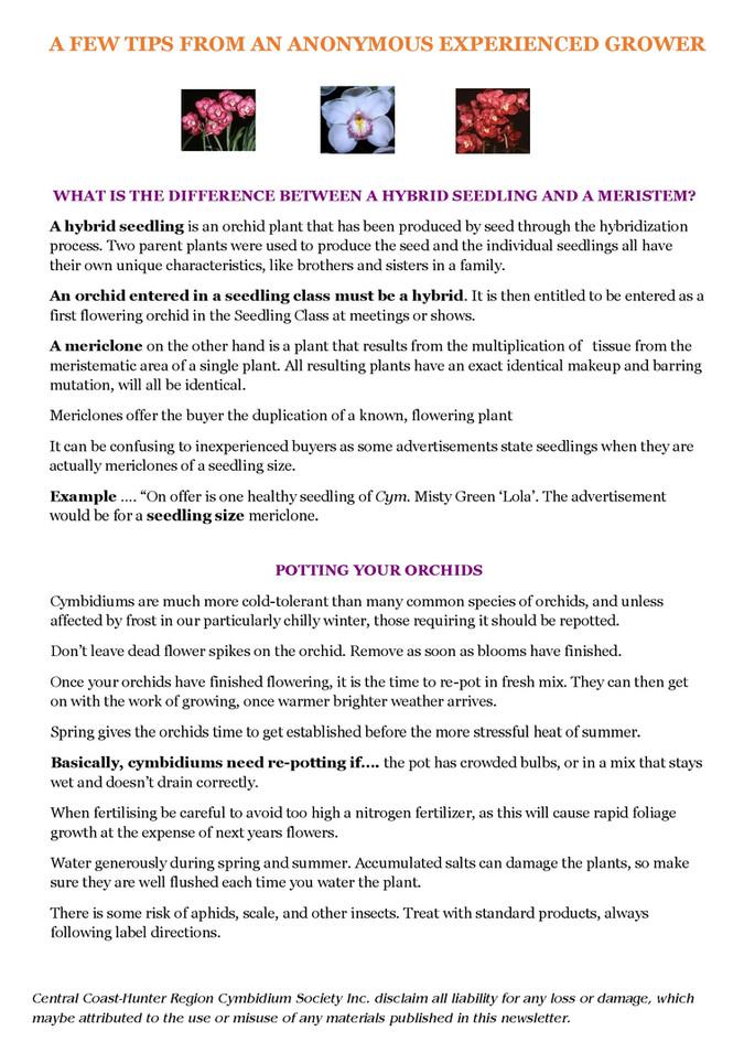 September Newsletter-6.jpg