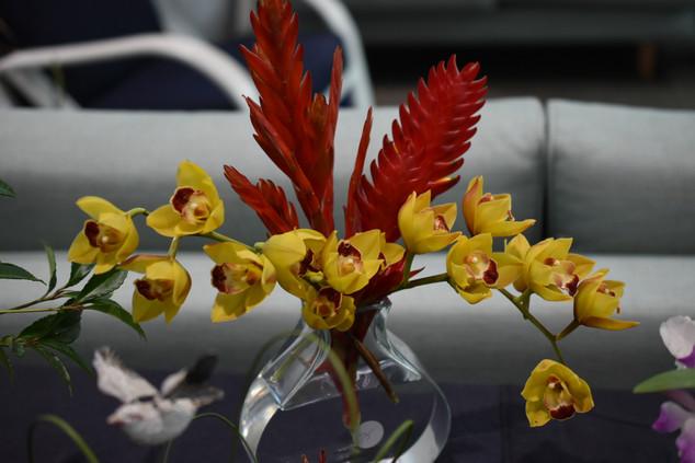 Floral Art- Spring Blooms