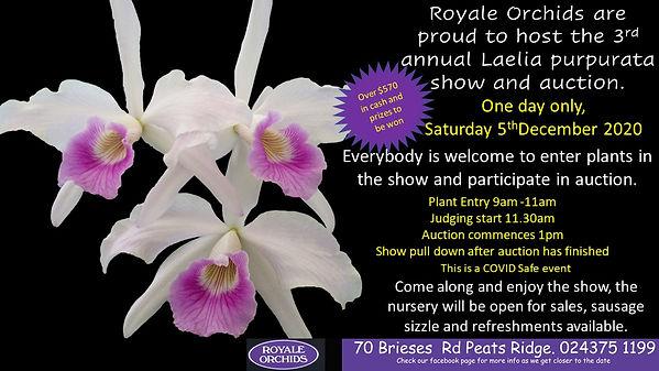Purpurata Show and Auction Flyer 2020[80