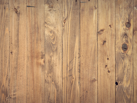 What You Need To Know About Wood-Boring Pests