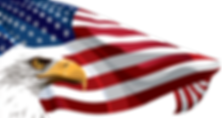 eagle and flag transparent 1.png
