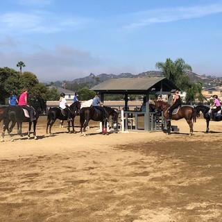 Sunday Morning Group Horseback Riding Lesson
