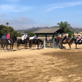 Sunday Morning Group Horseback Riding Lesson