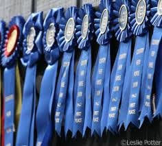 We LOVE Blue Ribbons!