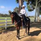 Brooke and Sam Spade @ Labor Day Classic Horse Show