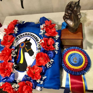 Grand National & World Championship Horse Show - WC Katie and Navy