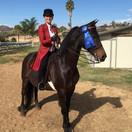 Rebecca and Goose @ Fall Fun Horse Show