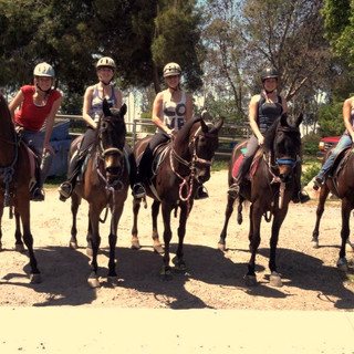 Advanced Rider Group Horseback Riding Lesson