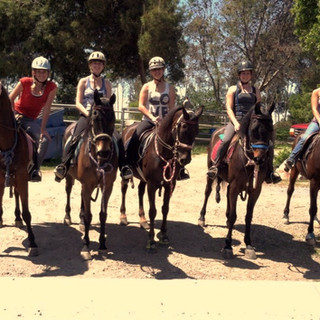 Advanced Rider Group Horseback Riding Lesson