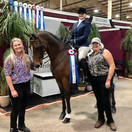 Katie and Graycliff Go Navy CH and trainers Brook and Ann @ Grand National & World Championship Horse Show 2020