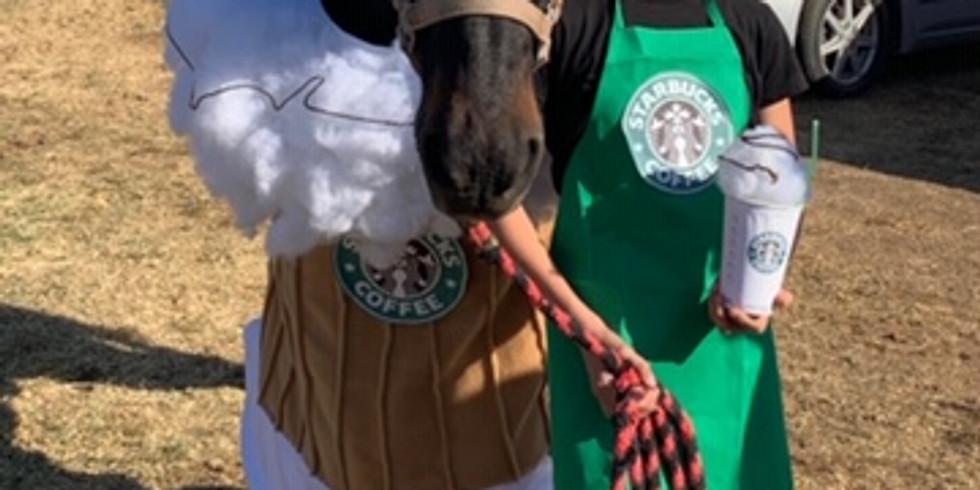 Fall Fun Horse Show