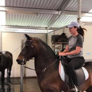 Escaping the Heat and Horseback Riding in the Main Barn Aisle