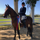 Katie and Graycliff GO Navy CH @ Labor Day Jubilee Horse Show 2020