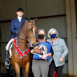 Katie and Graycliff Go Navy CH @ Grand National & World Championship Horse Show 2020