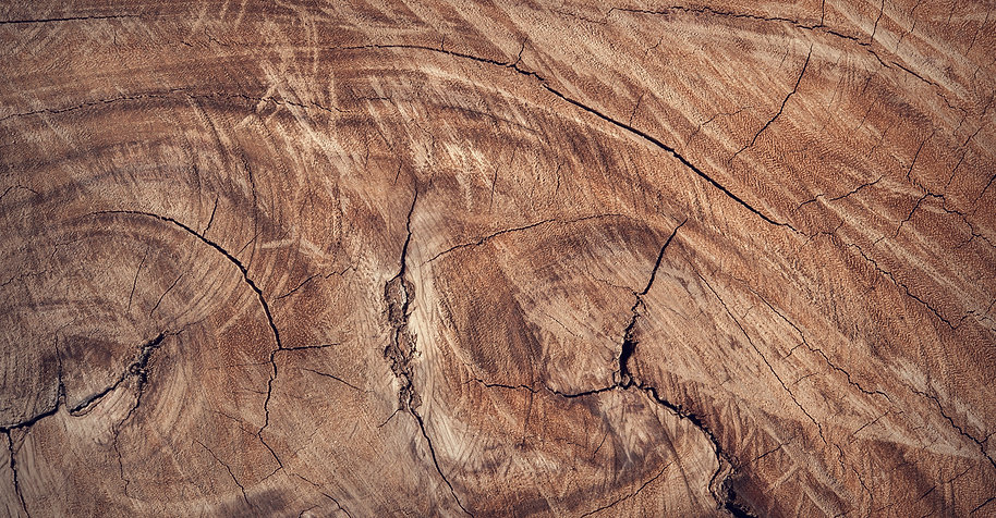 slider-wood-background-universal-concept