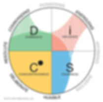 Everything DiSC Work of Leaders Five Pri