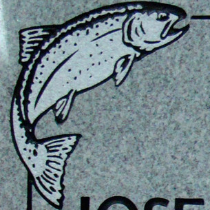 Linear graphic trout on light grey granite