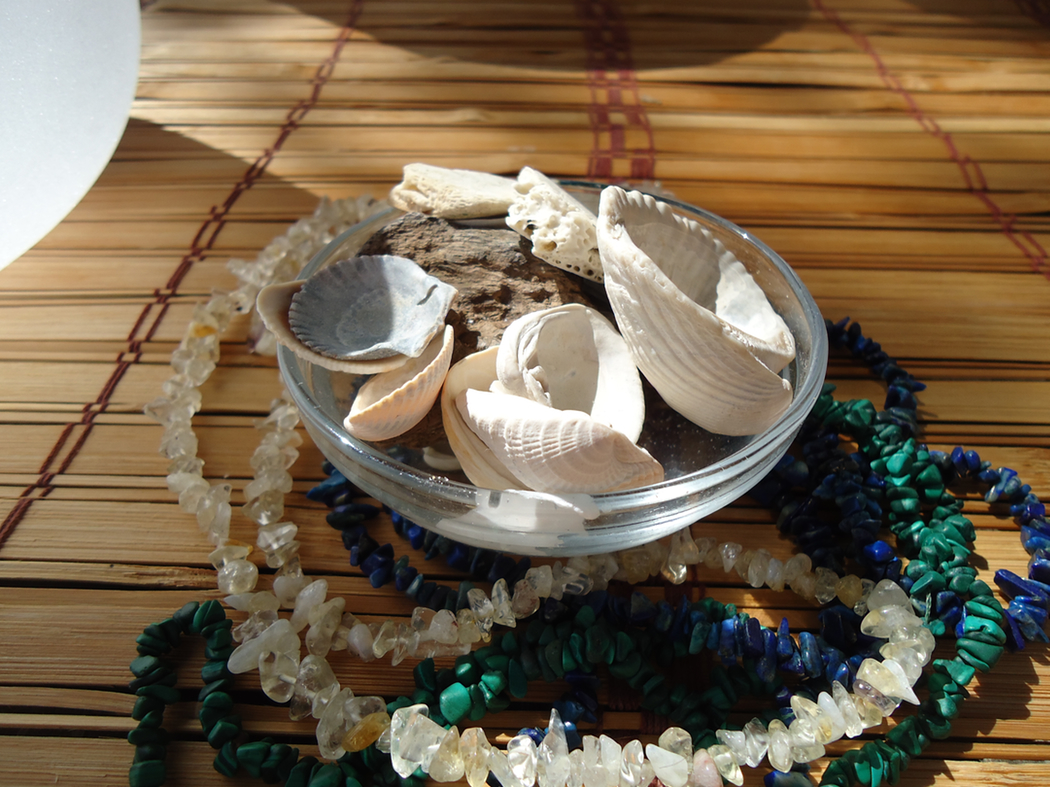 Water Shells and Stones