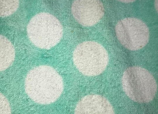 Mint Green with white Dots Terry