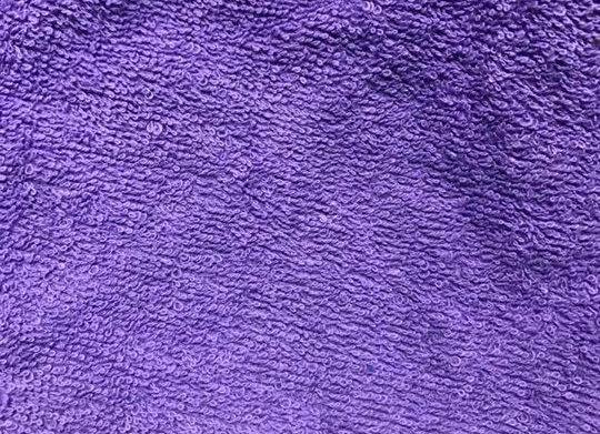 Purple Terry
