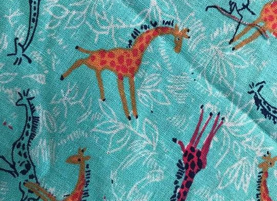 Bright giraffes