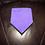 Thumbnail: Purple Terry