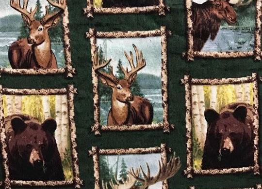 Moose & Bears