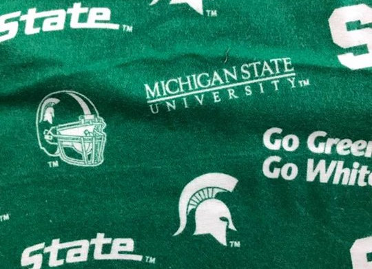 Michigan State (snuggle flannel)