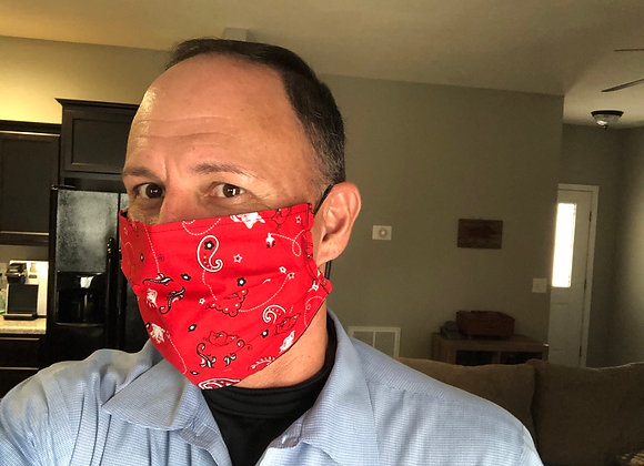 Arkansas mask 🐖