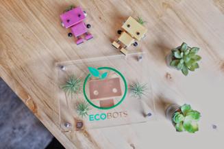 EcoBots LLC