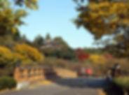 偕楽園-01.jpg